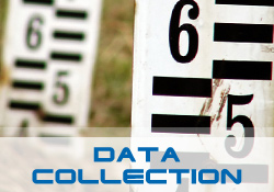 Data Collection Solutions