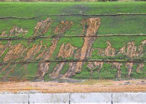 Roadside erosion